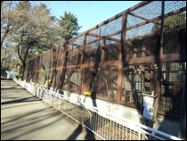 その他の塗装 施工事例3 鉄柵before